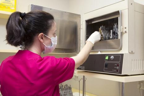 esterilizacion tarra2